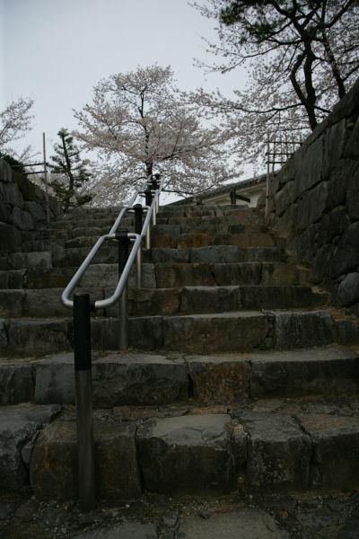 20060401_31_maizuru.jpg