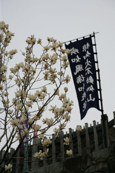 20060401_32_maizuru.jpg