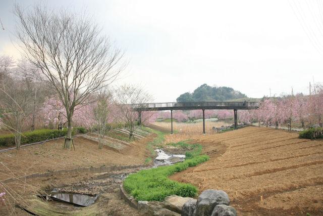 20060408_04_fudoki.jpg