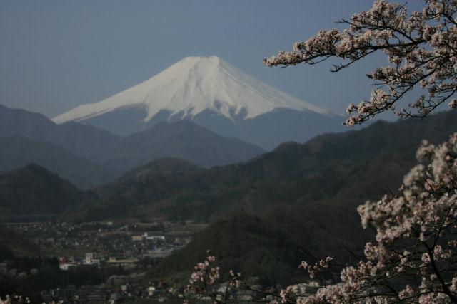 20060409_06_iwadono.jpg