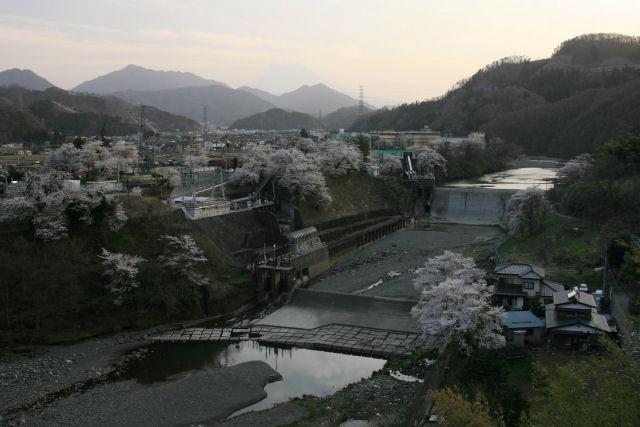 20060409_25_kawamo.jpg