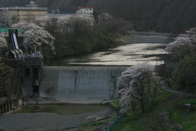 20060409_26_kawamo.jpg