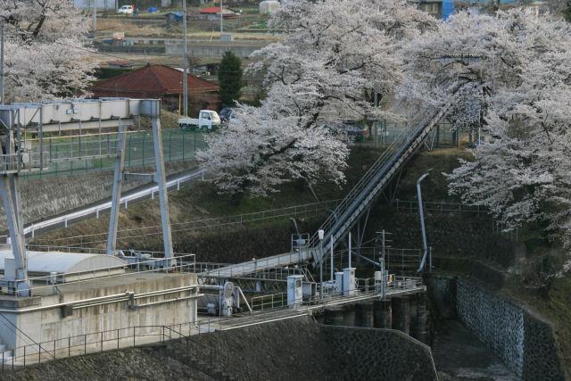 20060409_28_kawamo.jpg