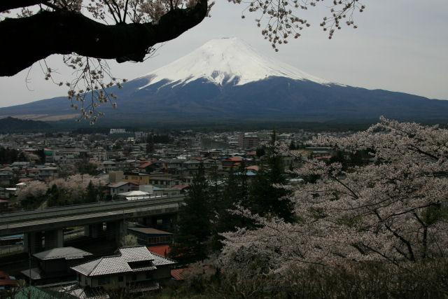 20060422_01_churei.jpg