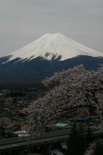 20060422_02_churei.jpg