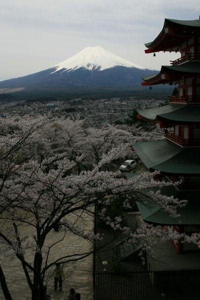 20060422_04_churei.jpg