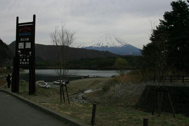 20060422_12_saiko.jpg