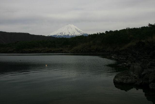 20060422_13_saiko.jpg
