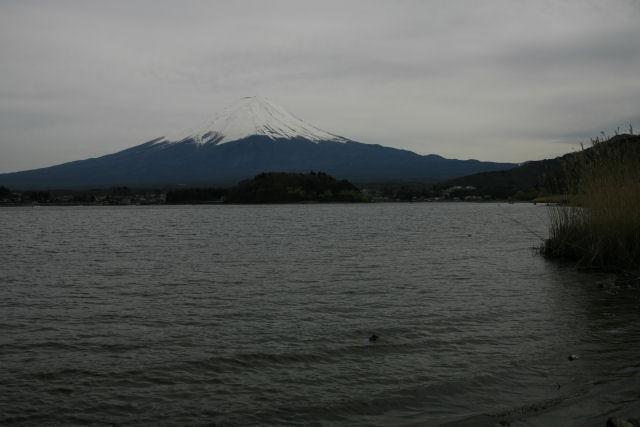 20060422_16_oishi.jpg