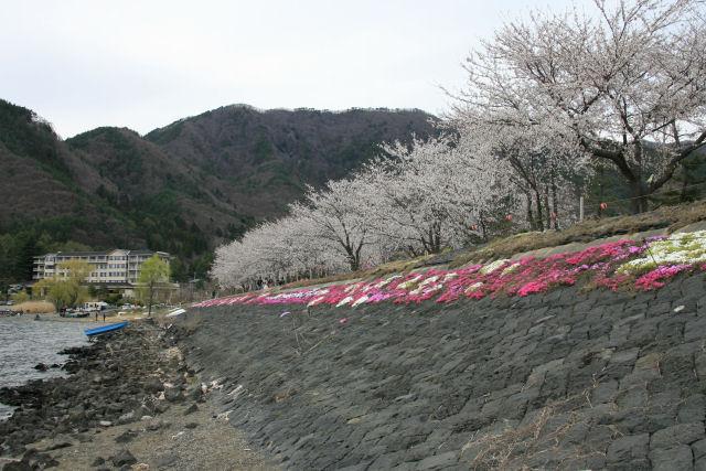 20060422_18_kawaguchi.jpg