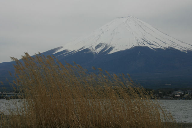 20060422_19_kawaguchi.jpg
