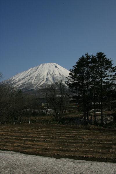 20060503_04_yotei.jpg