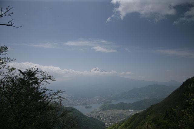 20060521_02_suzuran.jpg