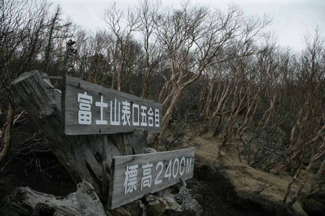 20060529_04_fujinomiya.jpg