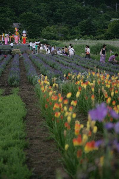 20060708_07_ohishi.jpg