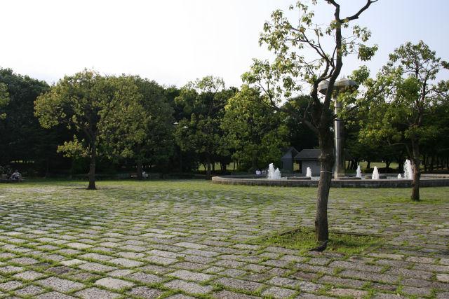 20060730_03_fuchunomori.jpg