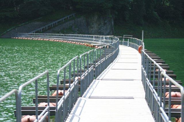 20060902_11_okutama-ko-ir.jpg