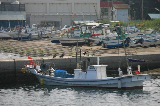 20060909_02_jyogashimas.jpg