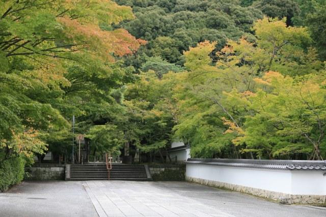 20061007_1125_eikando.jpg
