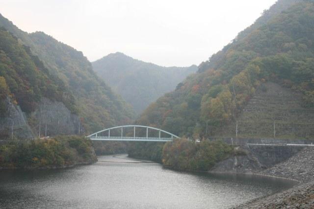 20061104_01_mizukaki.jpg