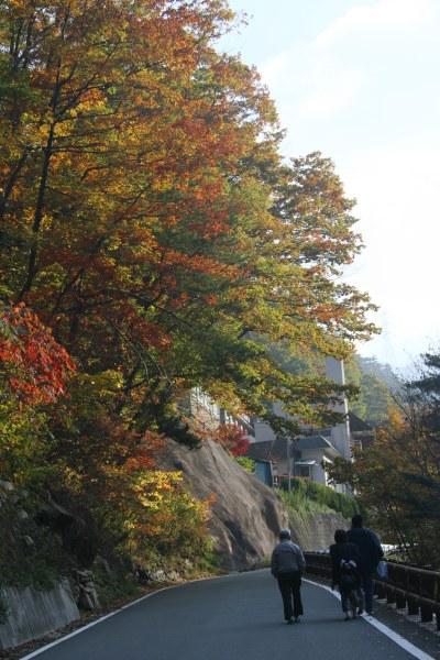 20061104_14_masutomi.jpg