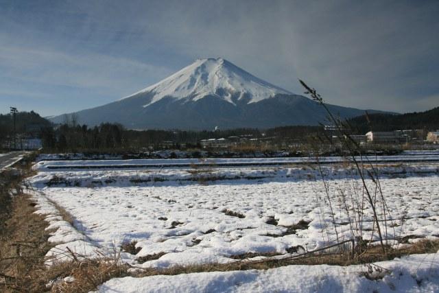 20070113_14_nodo.jpg