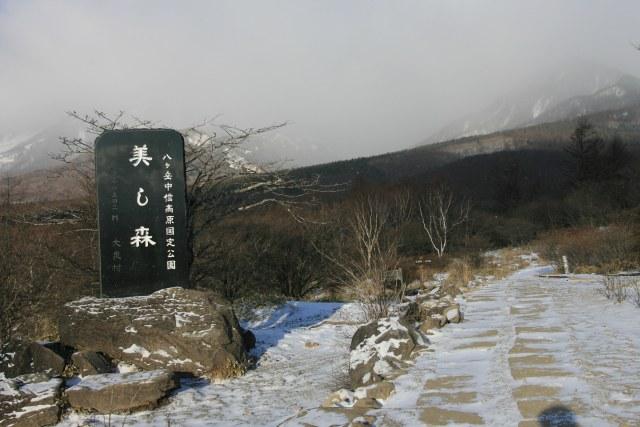 20070211_06_utsukushi.jpg