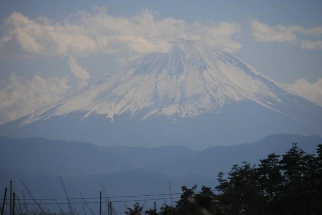 20070211_27_shinpu.jpg
