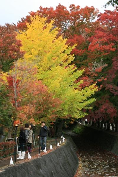 20071110_04_kairou.jpg