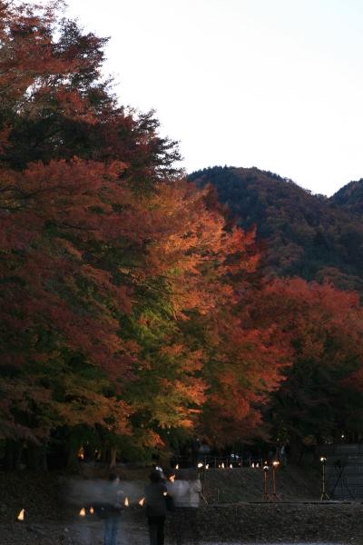 20071118_05_kairou.jpg