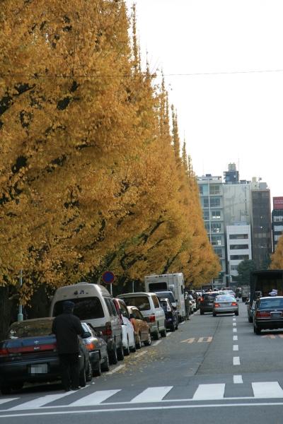 20071208_01_gaien.jpg
