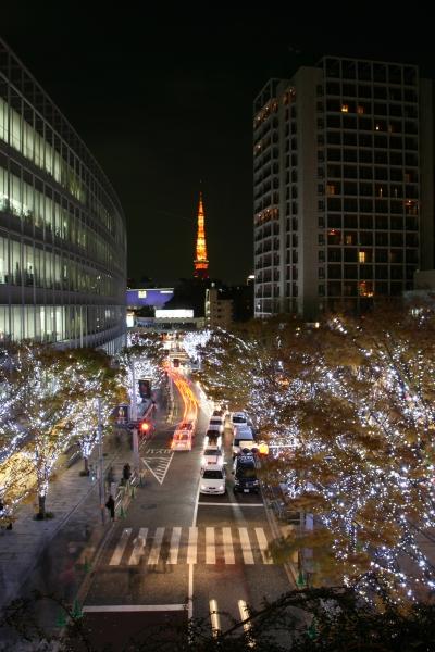 20071208_44_keyaki.jpg