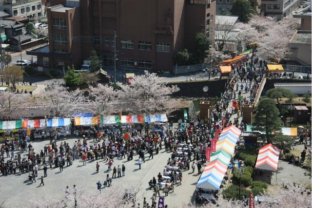 20080406_12_maizuru.jpg