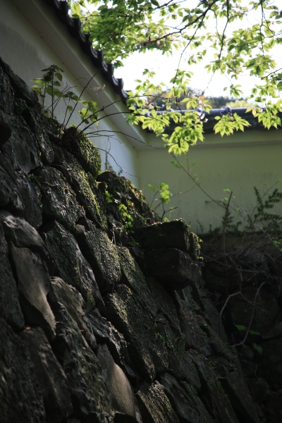 20080428_01_hirado.jpg