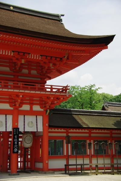 20080608_01_shimo.jpg