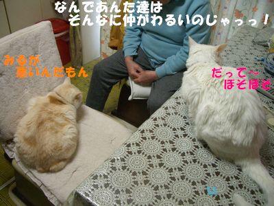 大魔王登場!