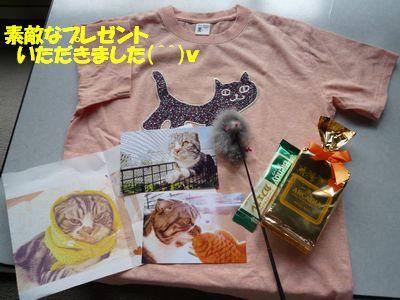 素敵なプレゼントいただきました(^^)v