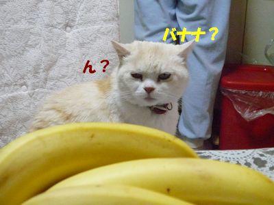 ん?バナナ?
