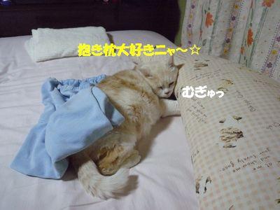抱き枕大好きニャ~☆