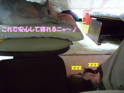 これで安心して寝れるニャ~♪