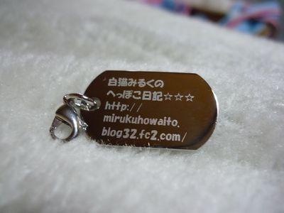 P1010419.jpg