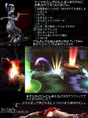 nol_08_04_05_03.jpg