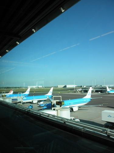KLMって可愛い