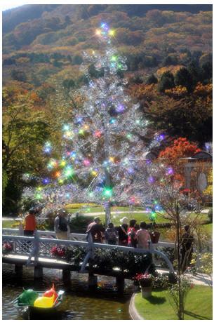 ガラスの森クリスマス