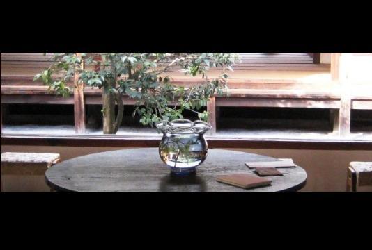 kyoto 101