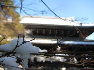 kyoto 028