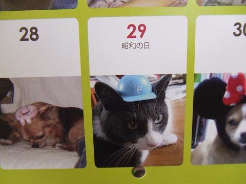 3帽子文ちゃん