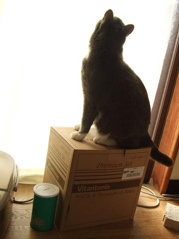 1良い箱だ・・