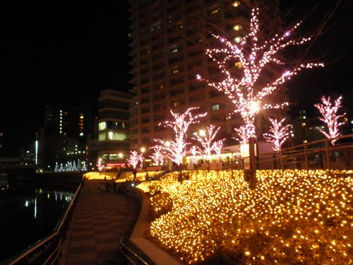 目黒川イルミネーション2011-3