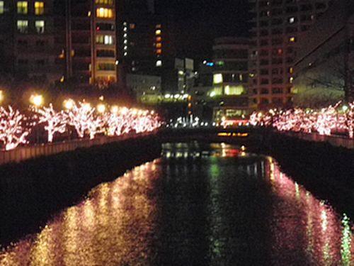 目黒川イルミネーション2011-1